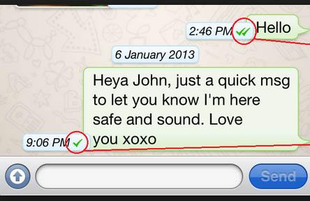 Chat mostrando quando uma mensagem foi entregue e outra não no Whatsapp